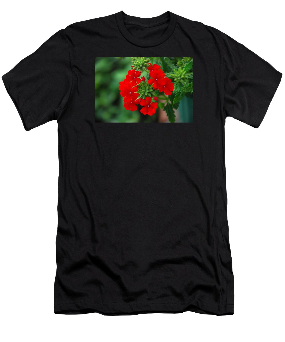 Verbana Men's T-Shirt (Athletic Fit) featuring the photograph Red Verbana by Francie Davis