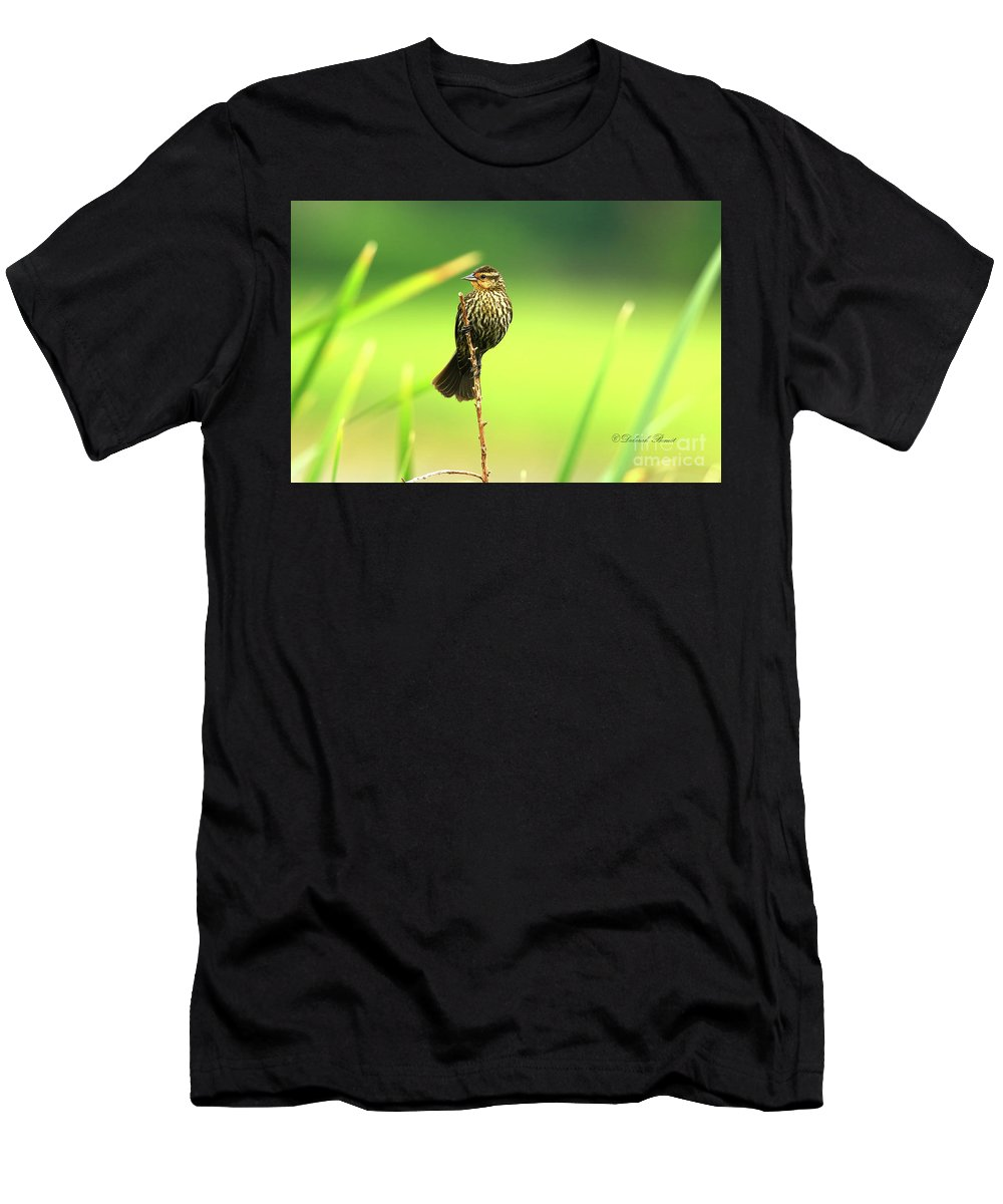 Red Winged Men's T-Shirt (Athletic Fit) featuring the photograph Red Winged Blackbird Female by Deborah Benoit