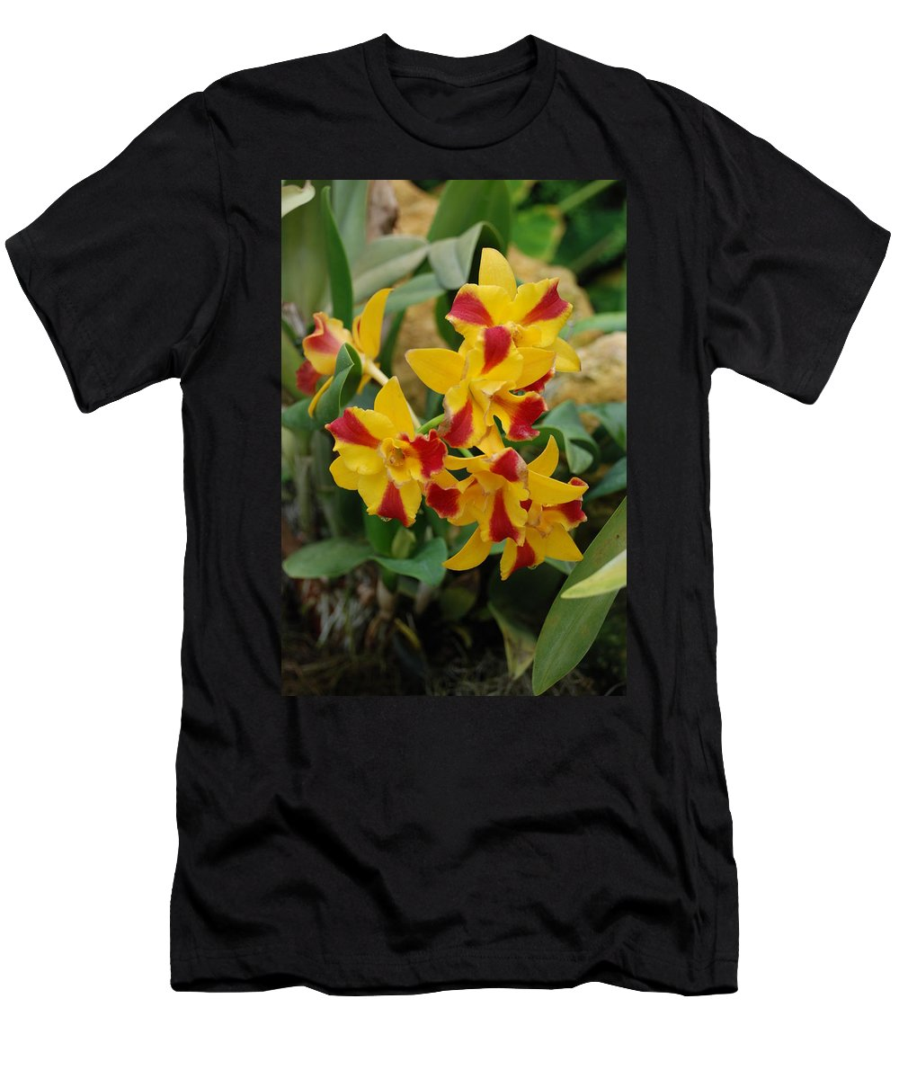 Macro Men's T-Shirt (Athletic Fit) featuring the photograph Red Yellow Orchids by Rob Hans