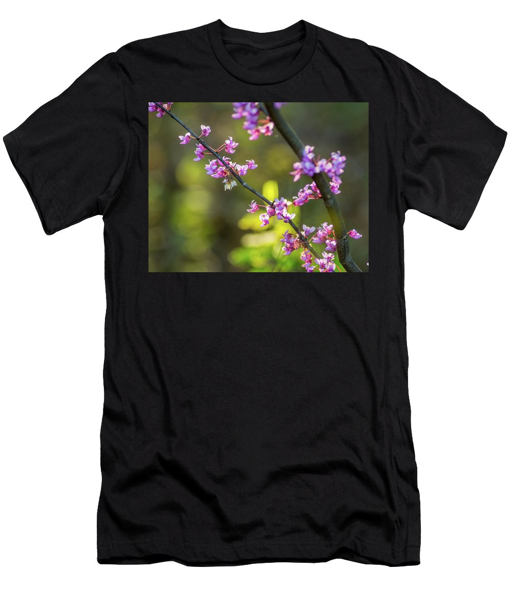 Redbud Bloom At Cumberland Gap National Park Kentucky Virginia Tennessee Ky Va Tn Men's T-Shirt (Athletic Fit) featuring the photograph Redbud Bloom by Katelyn Johnson