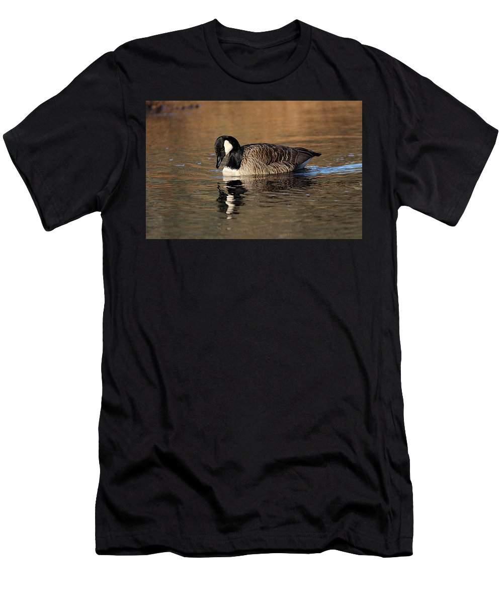 Canada Goose Men's T-Shirt (Athletic Fit) featuring the photograph Reflective Moments by Linda Crockett