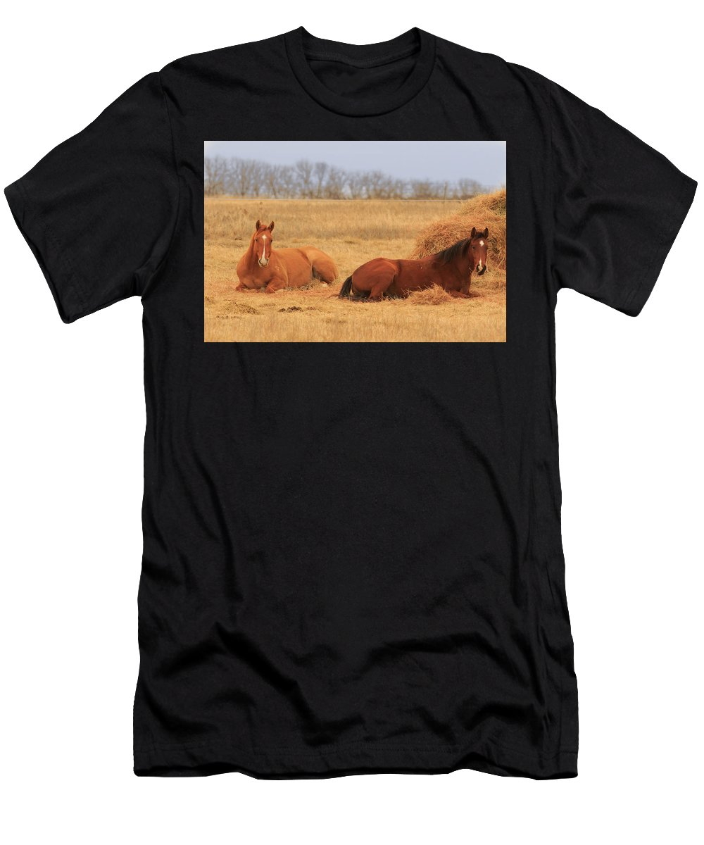 Animal Men's T-Shirt (Athletic Fit) featuring the photograph Rest by The Bohemian Lens LLC