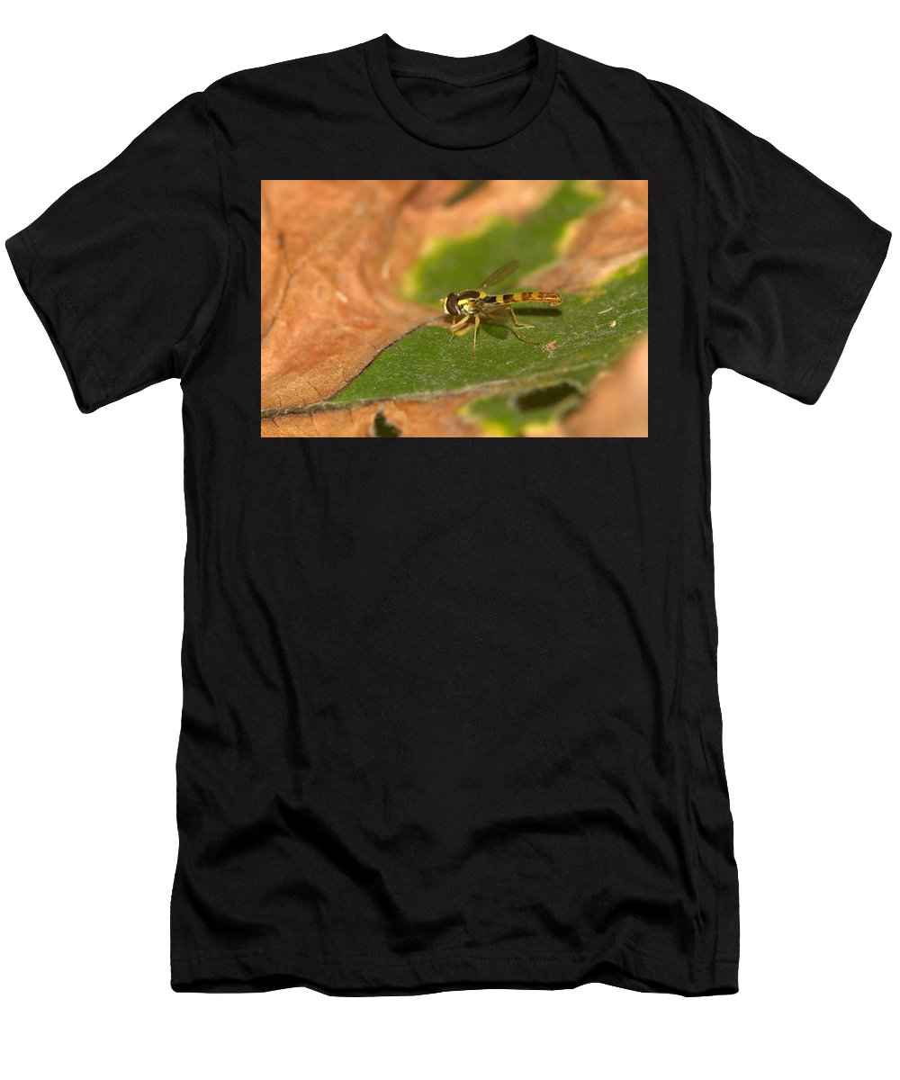 Fly Men's T-Shirt (Athletic Fit) featuring the photograph Resting 2 by Ricardo Oliveira