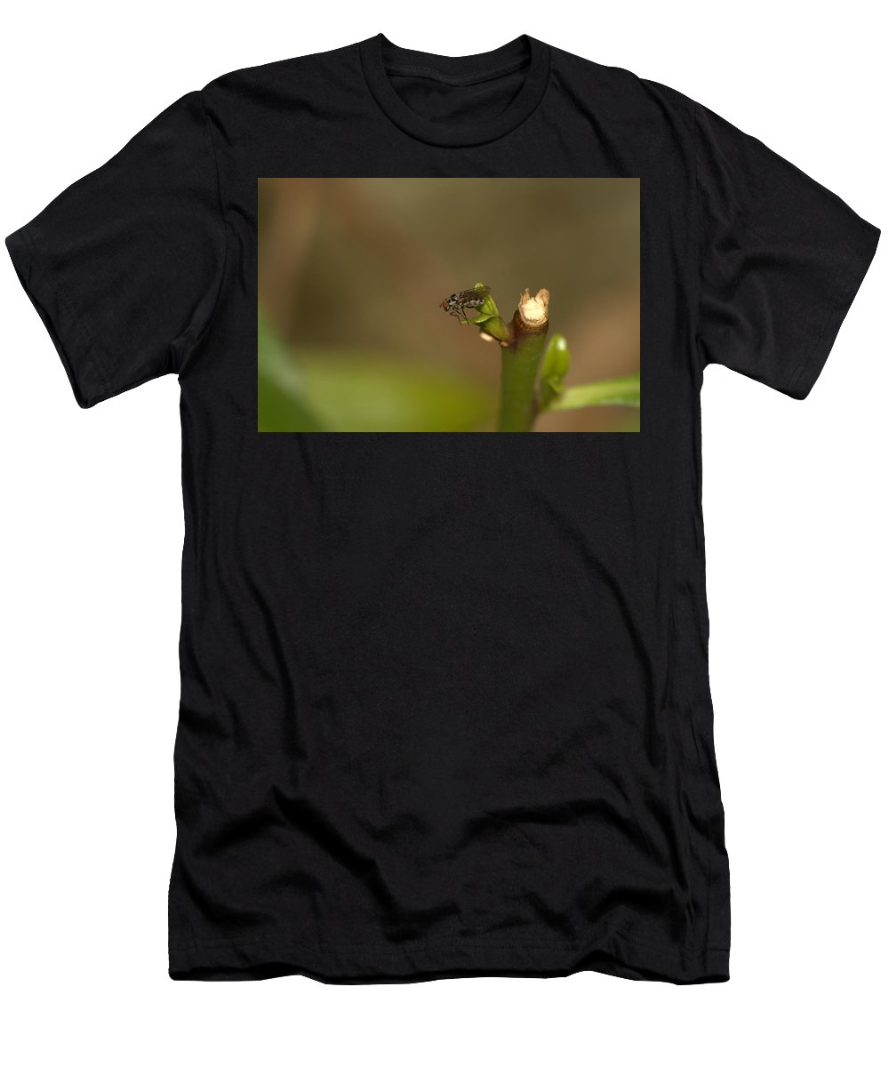 Fly Men's T-Shirt (Athletic Fit) featuring the photograph Resting 3 by Ricardo Oliveira