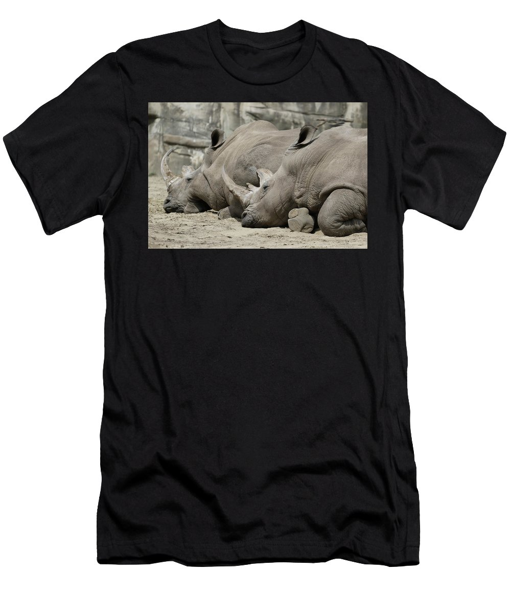 Rhinoceros Men's T-Shirt (Athletic Fit) featuring the photograph Resting Rhinos by Norman Saagman