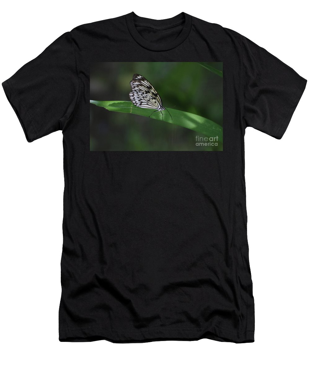 Tree-nymph Men's T-Shirt (Athletic Fit) featuring the photograph Rice Paper Butterfly On A Long Daylily Leaf by DejaVu Designs