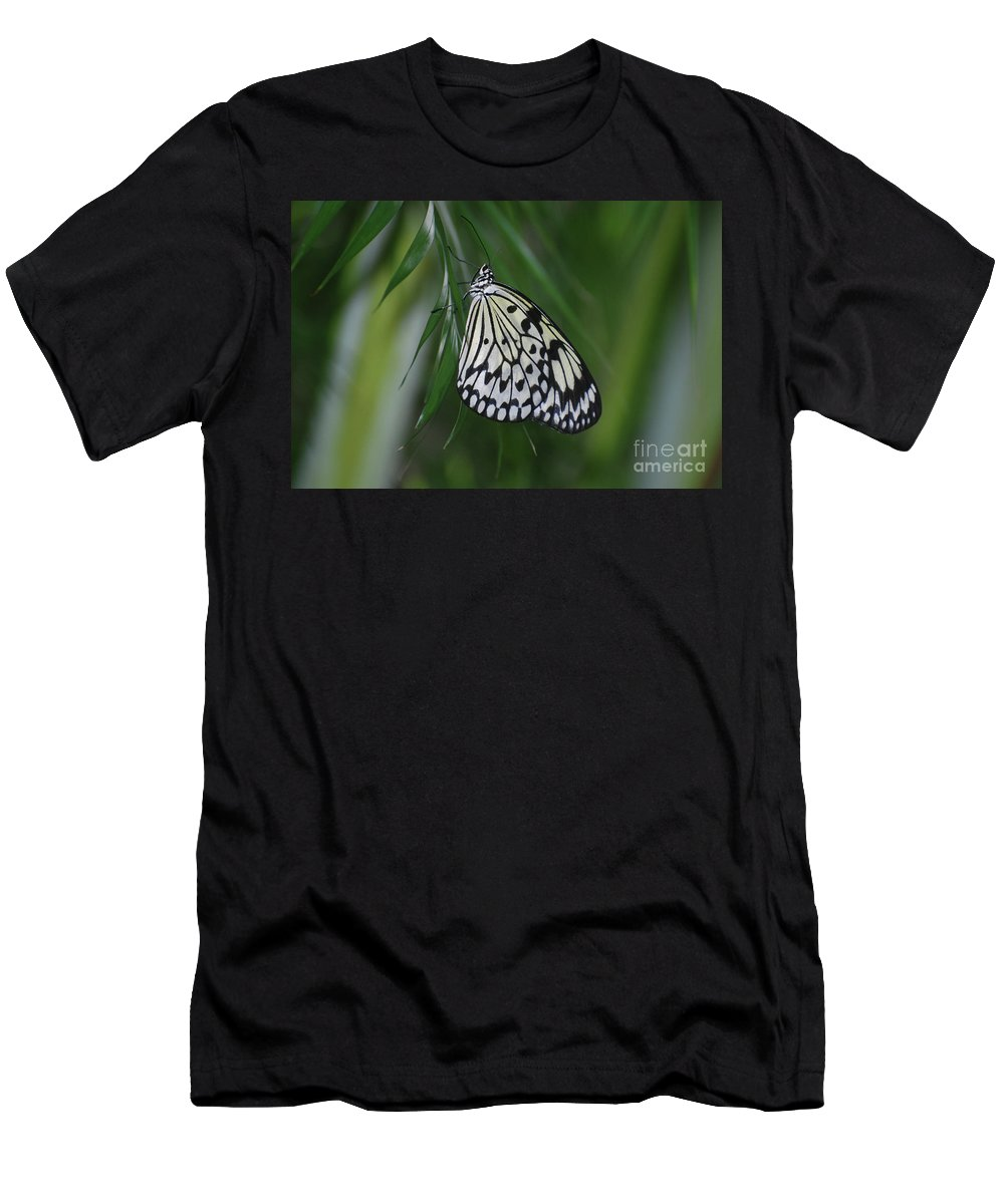 Tree-nymph Men's T-Shirt (Athletic Fit) featuring the photograph Rice Paper Butterfly Sitting On Green Foliage by DejaVu Designs