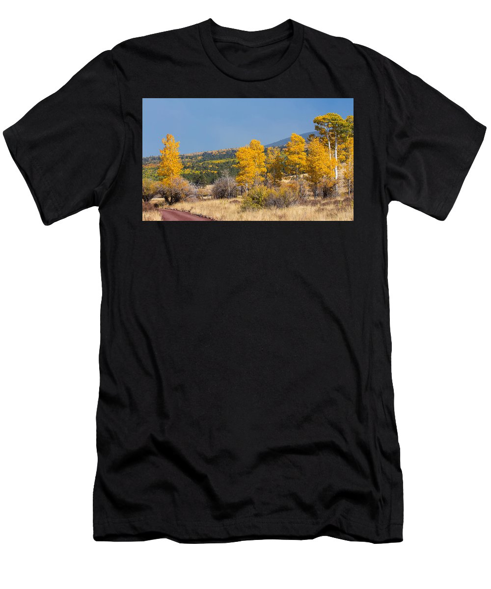 Fall Men's T-Shirt (Athletic Fit) featuring the photograph Road To Hart Prairie by Susan Westervelt