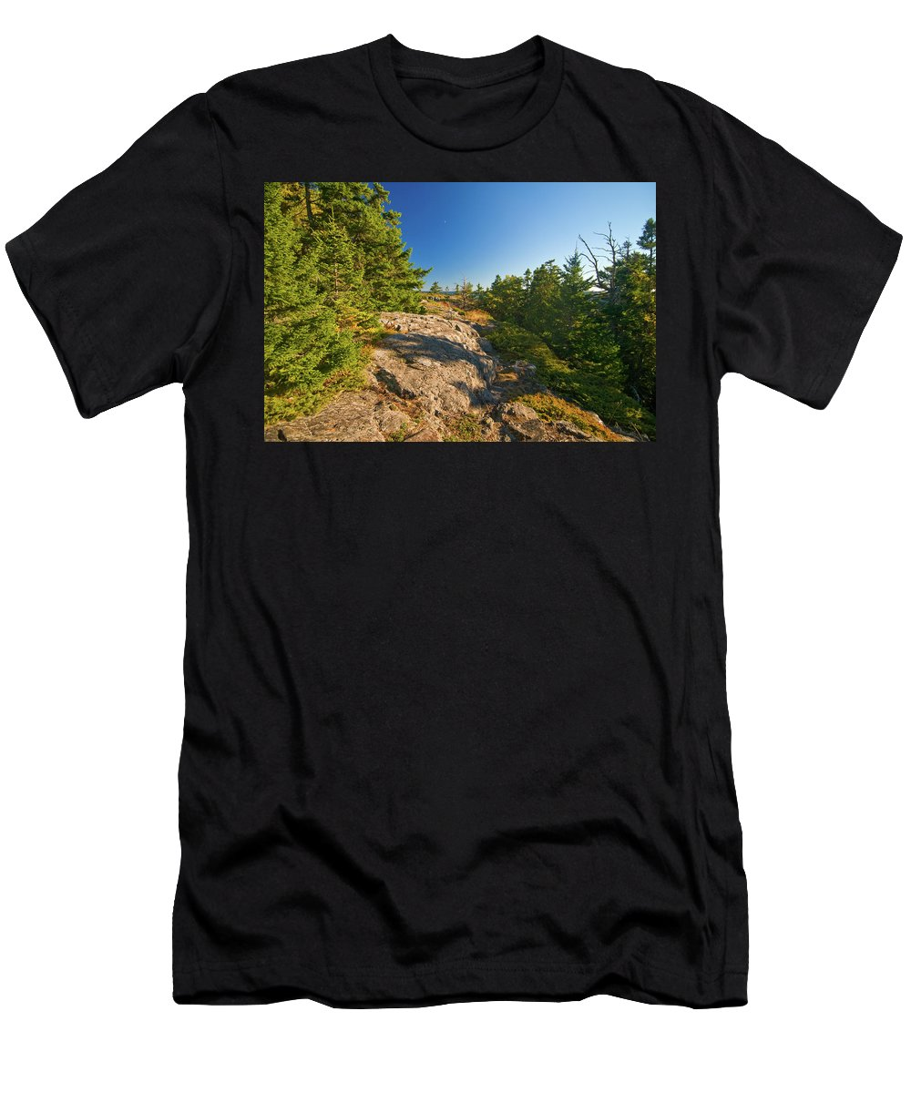 acadia National Park Men's T-Shirt (Athletic Fit) featuring the photograph Rocky Trail by Paul Mangold
