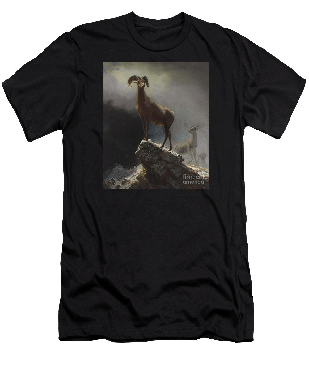 Albert_bierstadt_-_rocky_mountain_sheep_or_big_horn Men's T-Shirt (Athletic Fit) featuring the painting Rocky_mountain_sheep_or_big_horn,_ovis,_montana by Celestial Images