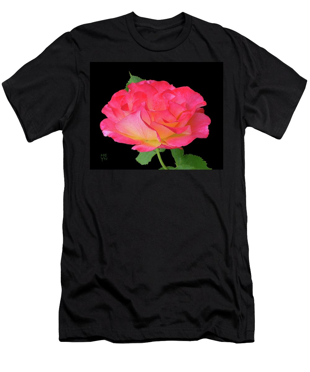 Cutout Men's T-Shirt (Athletic Fit) featuring the photograph Rose Blushing Cutout by Shirley Heyn