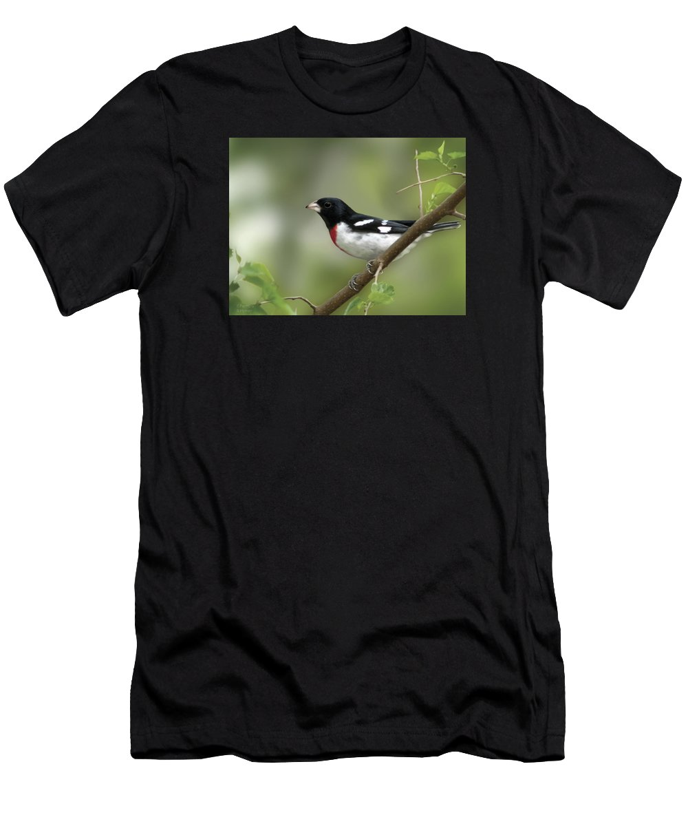 Nature Men's T-Shirt (Athletic Fit) featuring the digital art Rose Breasted Grosbeak by Barbara Hymer