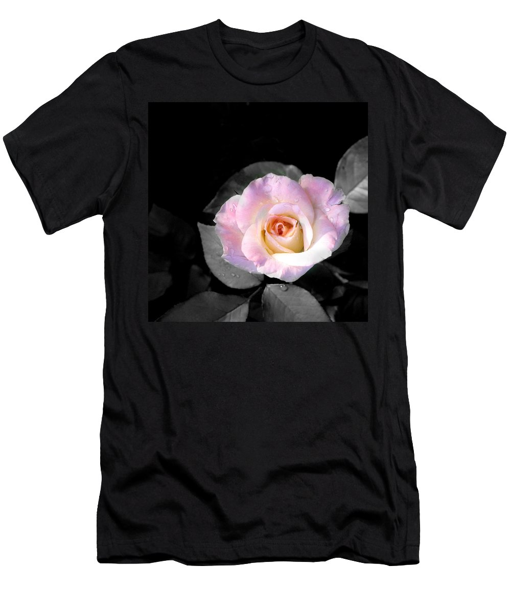 Princess Diana Rose Men's T-Shirt (Athletic Fit) featuring the photograph Rose Emergance by Steve Karol