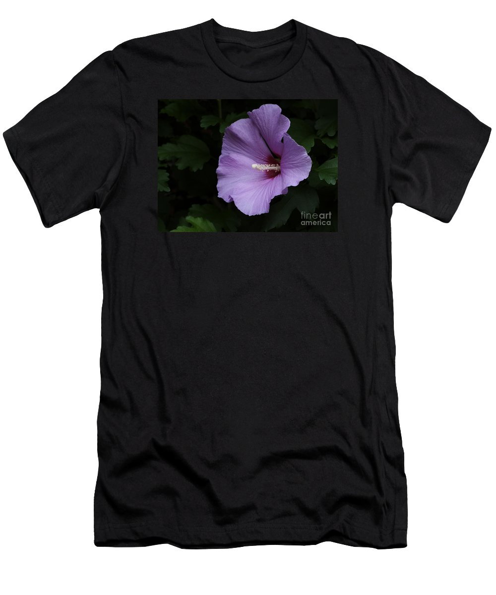 Flower Men's T-Shirt (Athletic Fit) featuring the photograph Rose Of Sharon - Hibiscus Syriacus by Ann Horn
