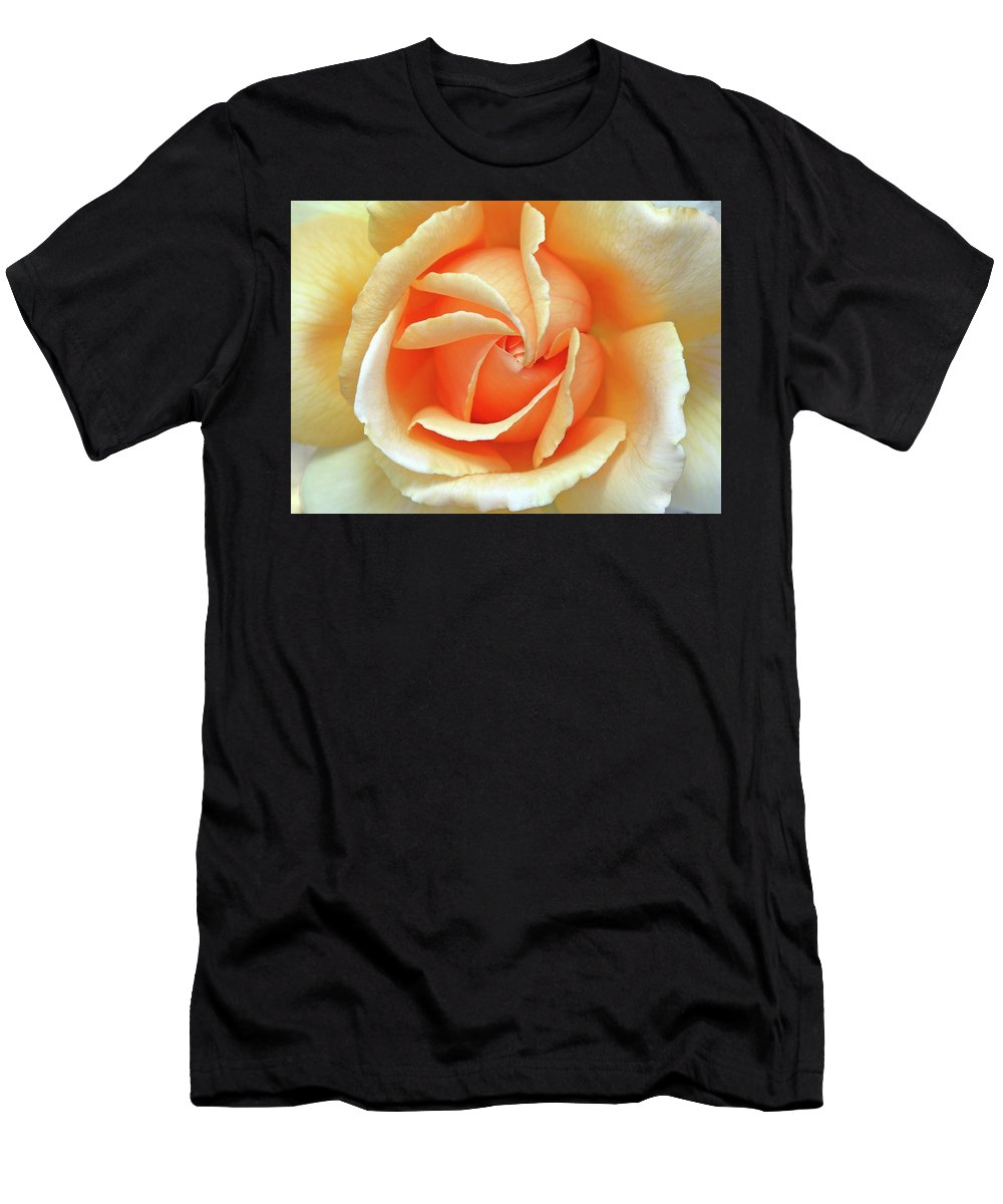 Flower Photos Men's T-Shirt (Athletic Fit) featuring the photograph Rose Unfolding by Maria Ollman