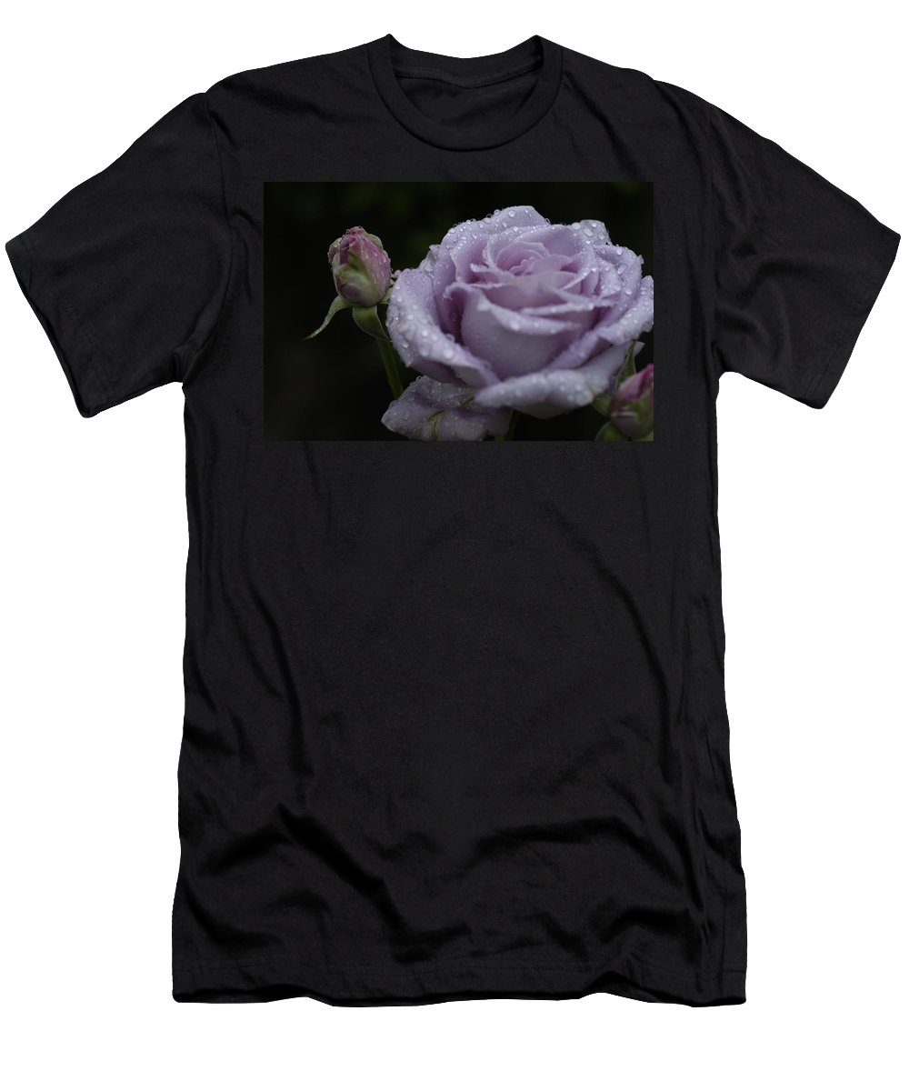 Rosebud Men's T-Shirt (Athletic Fit) featuring the photograph Rosebud by D'Arcy Evans