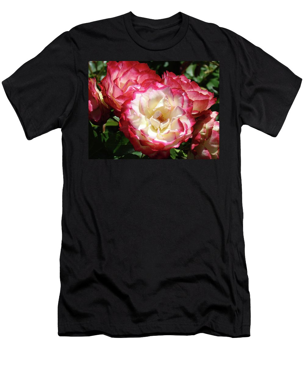 Rose Men's T-Shirt (Athletic Fit) featuring the photograph Roses Art Prints Pink White Rose Flowers Gifts Baslee Troutman by Baslee Troutman