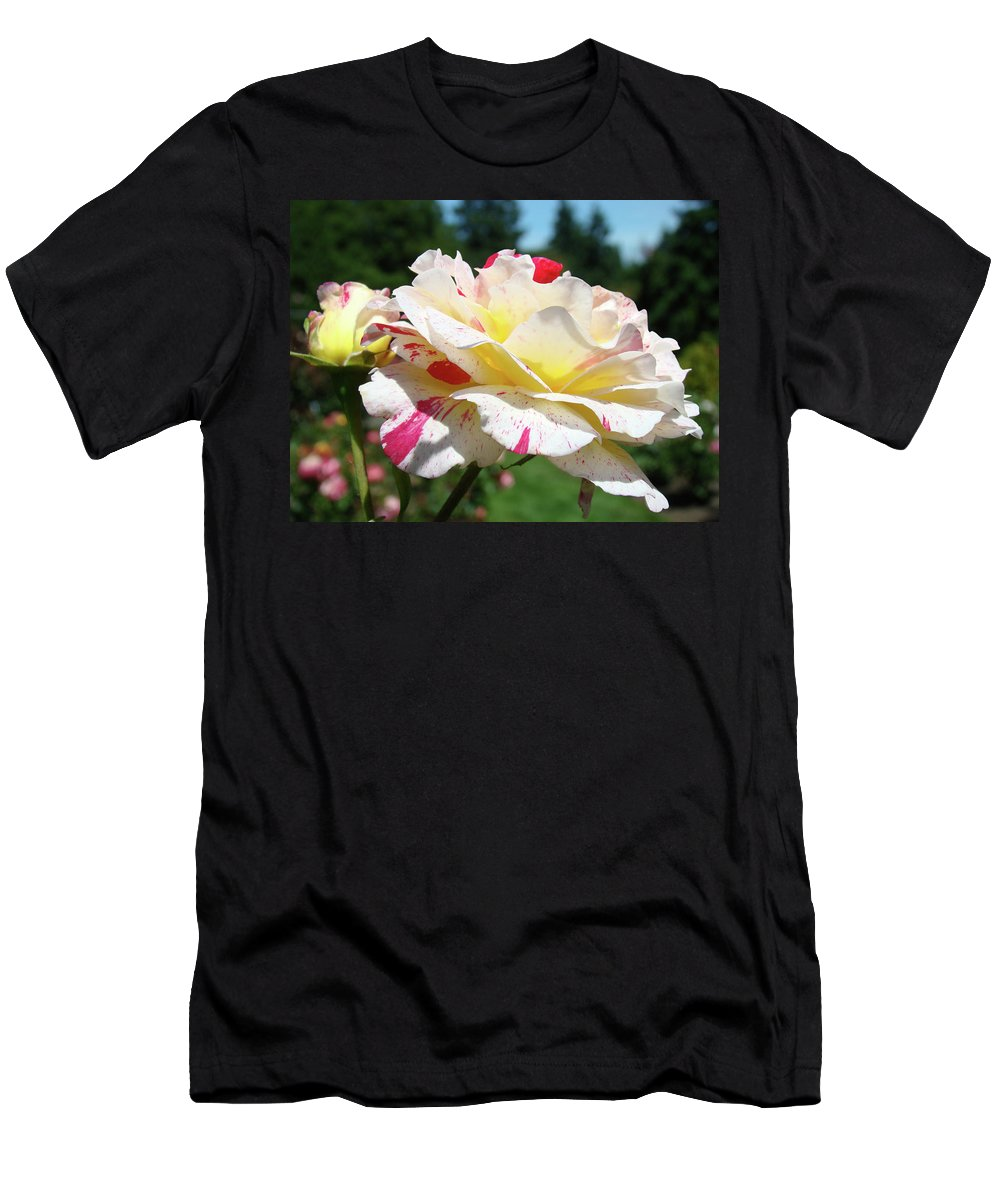 Rose Men's T-Shirt (Athletic Fit) featuring the photograph Roses White Pink Yellow Rose Flowers 3 Rose Garden Art Baslee Troutman by Baslee Troutman