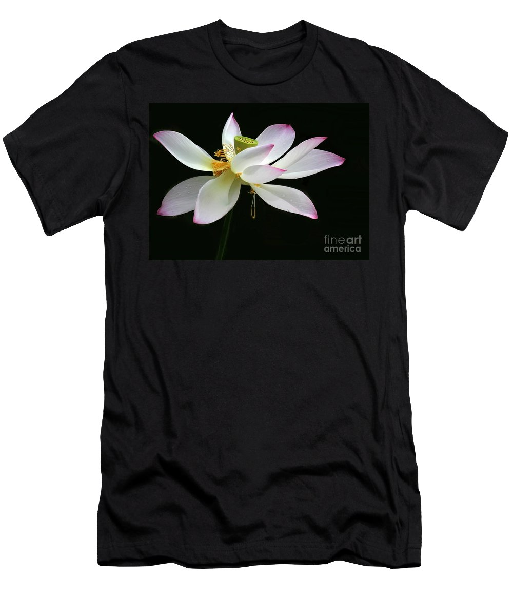 Flower Men's T-Shirt (Athletic Fit) featuring the photograph Royal Lotus by Sabrina L Ryan
