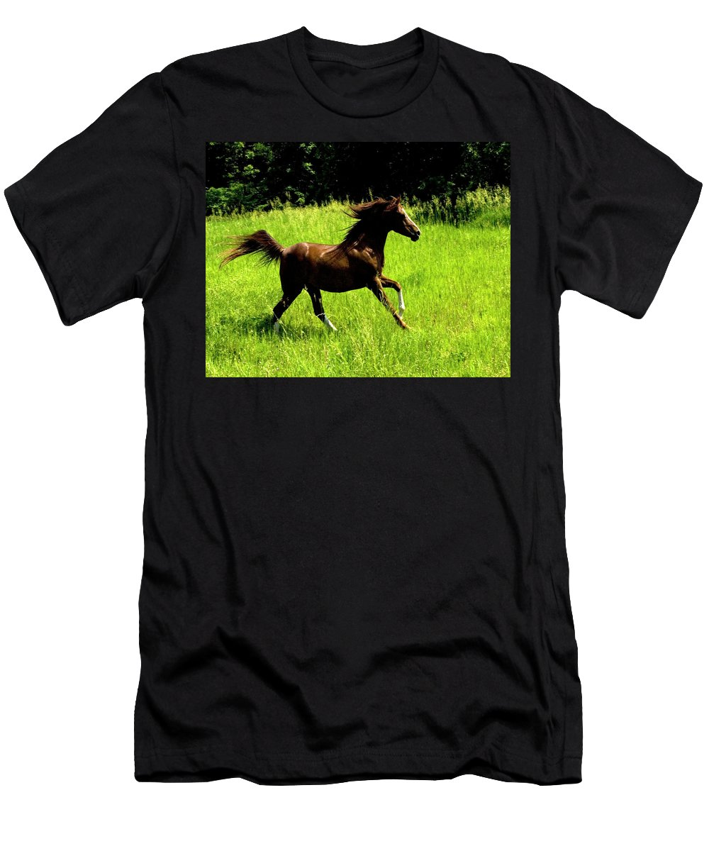 Horse Men's T-Shirt (Athletic Fit) featuring the photograph Running Free by Michael Barry