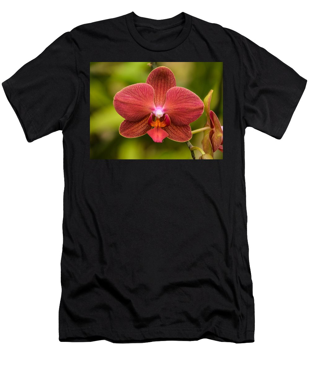 Orchid Men's T-Shirt (Athletic Fit) featuring the photograph Rusty Orchid by Robert Coffey