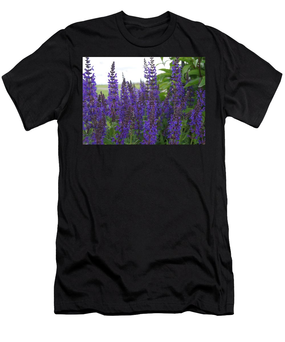 Purple Men's T-Shirt (Athletic Fit) featuring the photograph Salvia In The Spring by Kristi Ulrich