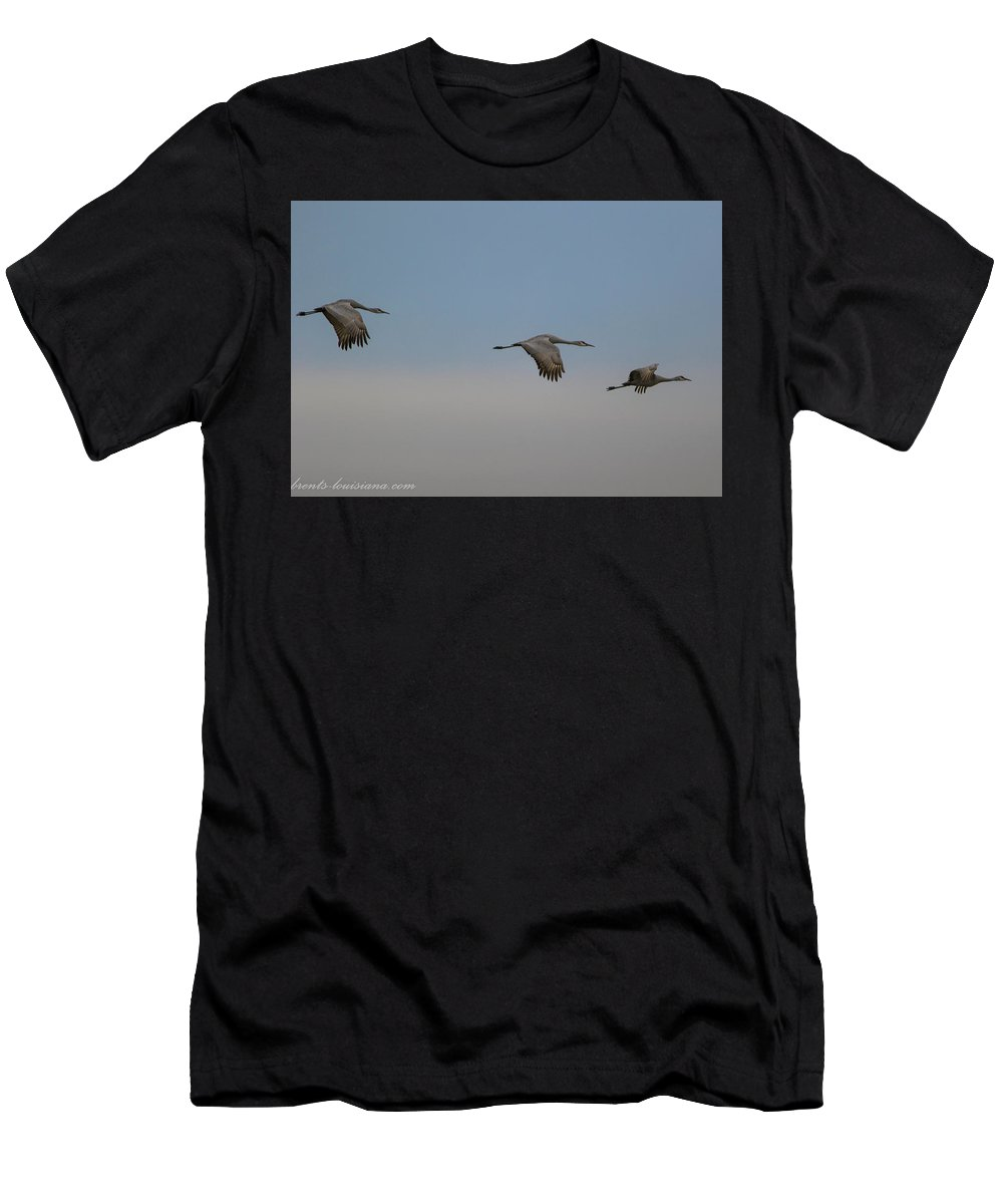 Sandhill Cranes Men's T-Shirt (Athletic Fit) featuring the photograph Sandhill Cranes In Flight by Brent Bordelon