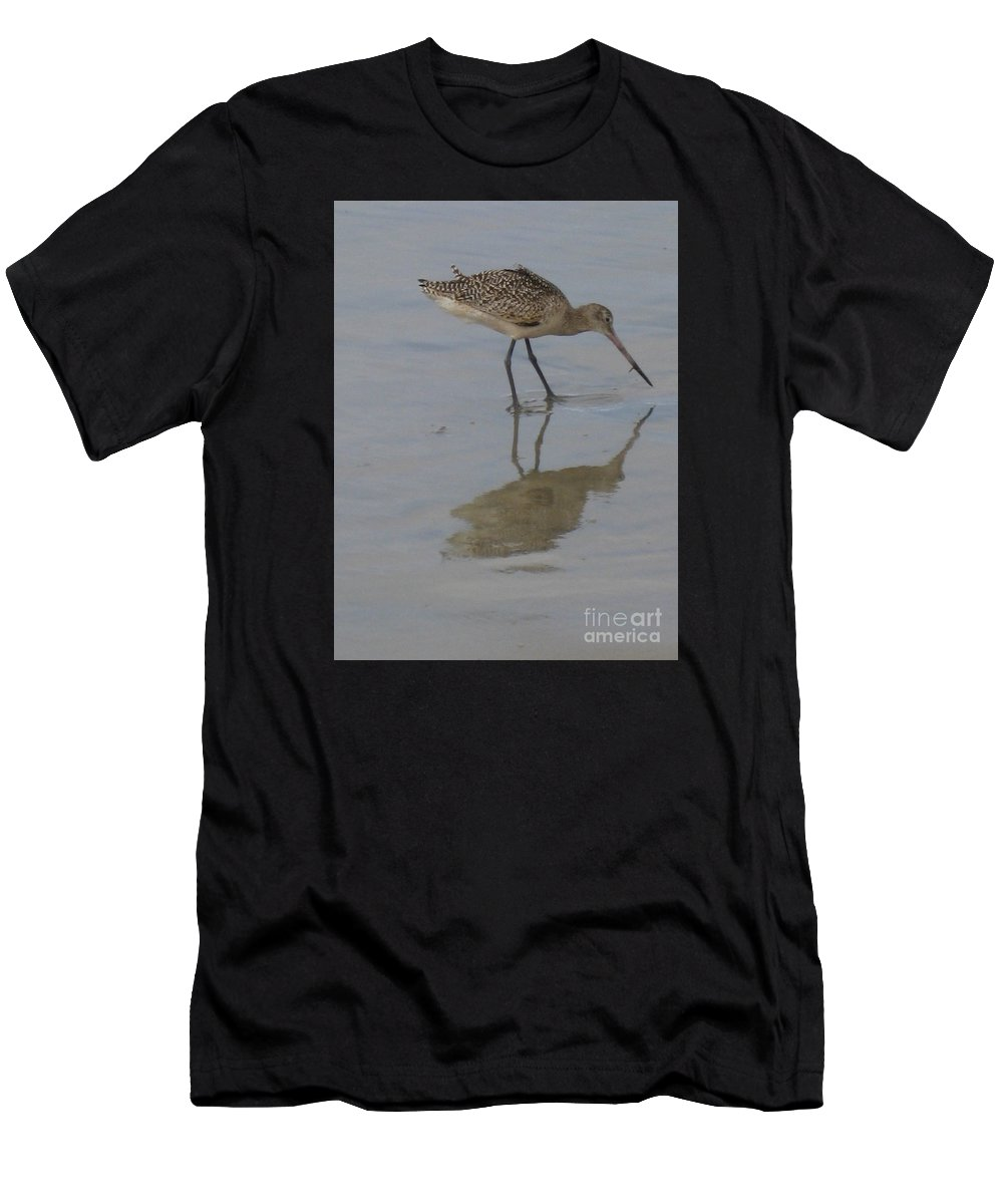 Marbled Godwit Men's T-Shirt (Athletic Fit) featuring the photograph Marbled Godwit 1 by Marta Robin Gaughen