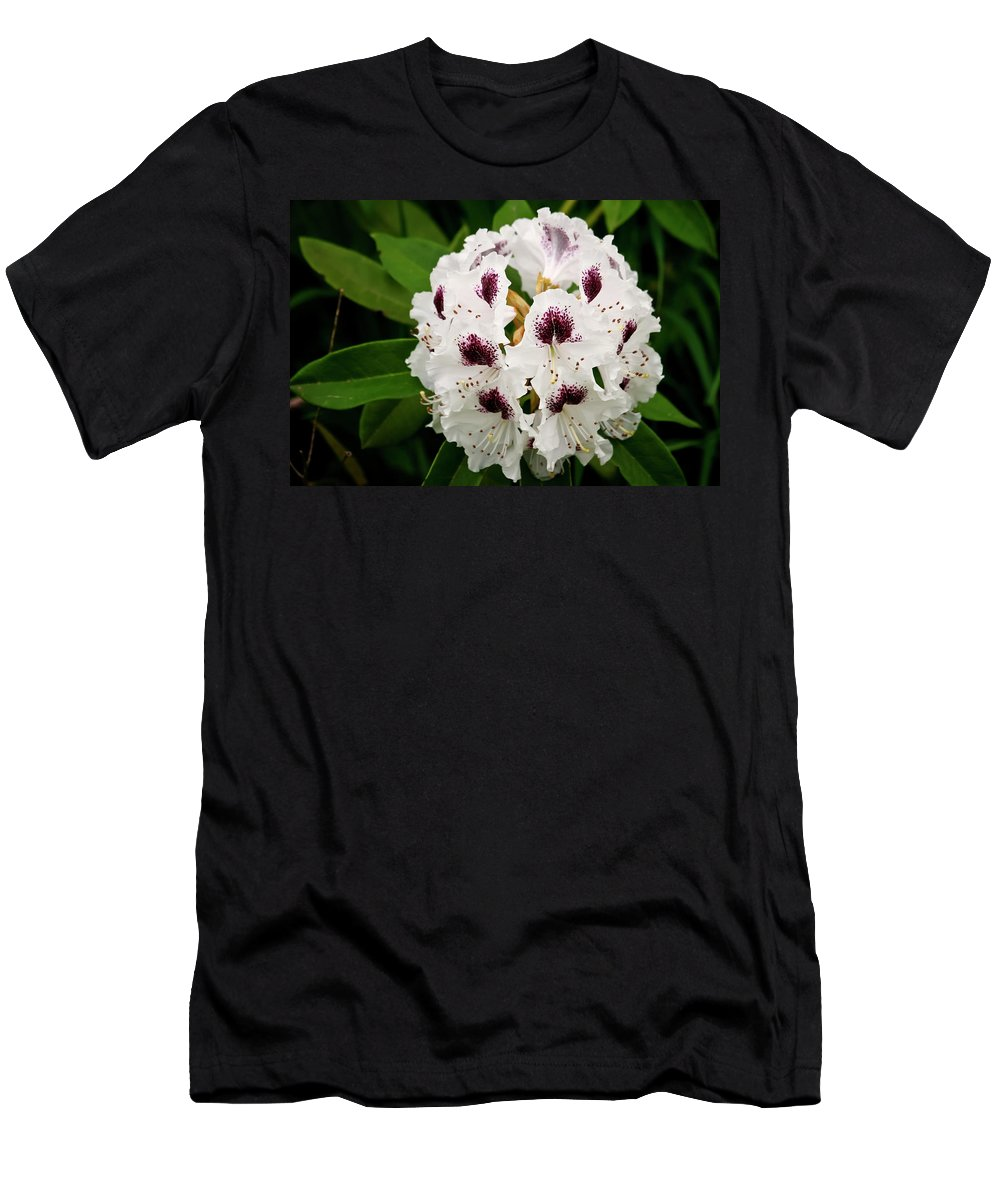 Rhododendron Men's T-Shirt (Athletic Fit) featuring the photograph Sappho Rhododendron by Albert Seger