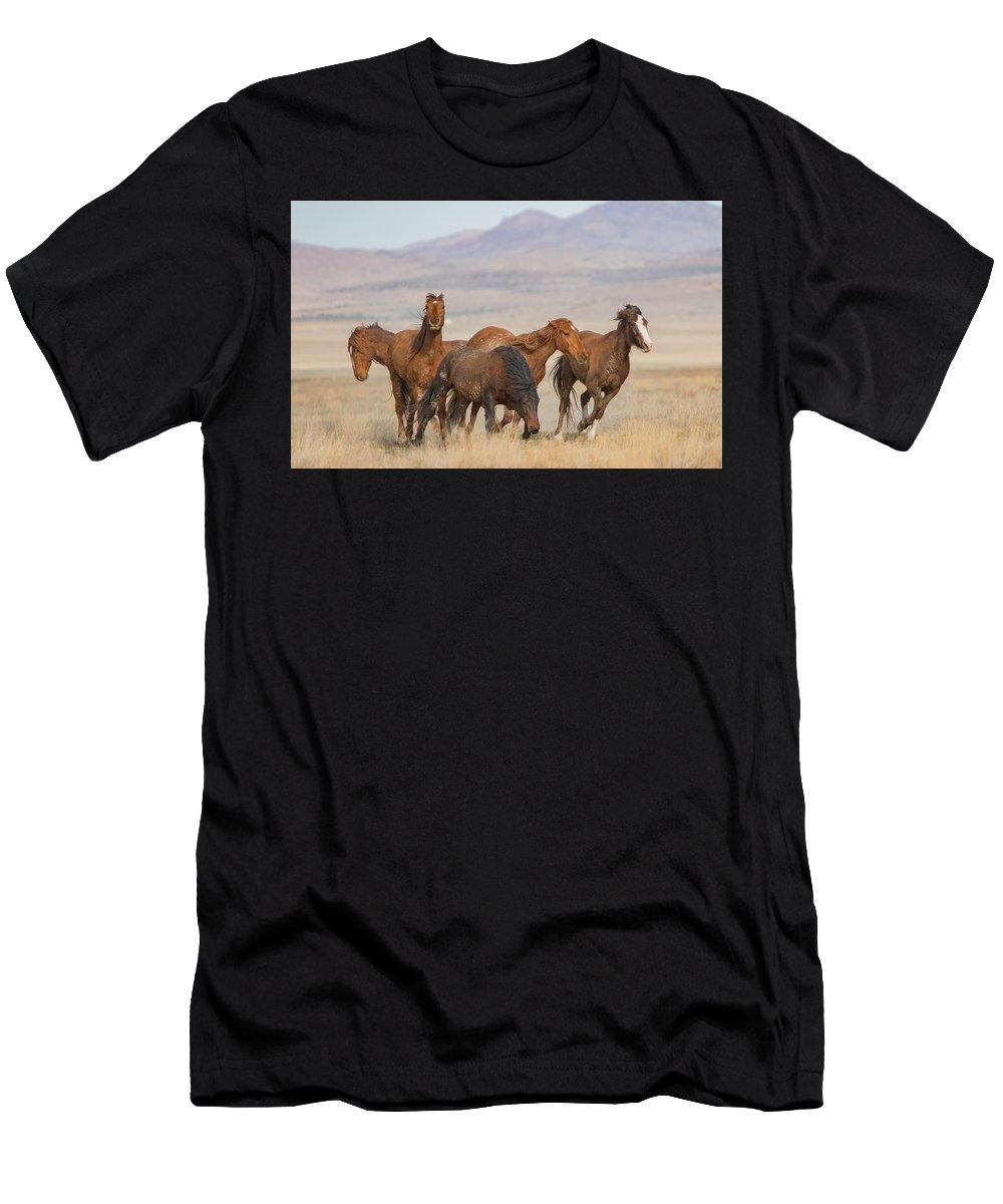 Horse Men's T-Shirt (Athletic Fit) featuring the photograph Scramble by Kent Keller