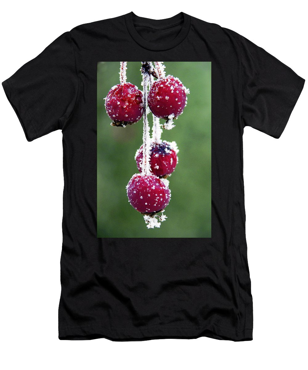 Berries Men's T-Shirt (Athletic Fit) featuring the photograph Seasonal Colors by Marilyn Hunt