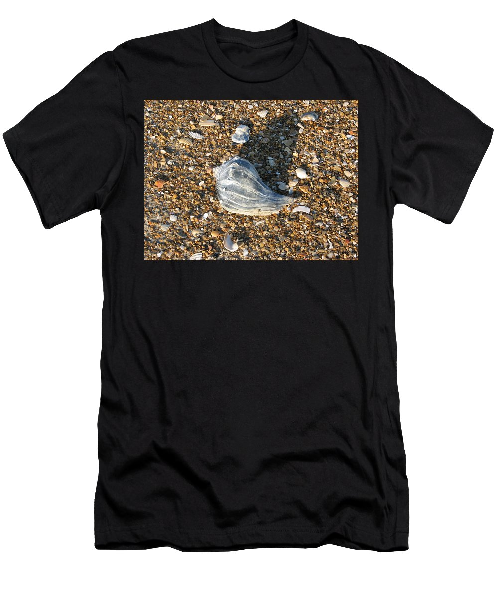 Seashore T-Shirt featuring the photograph Seashells on the seashore by Creative Solutions RipdNTorn