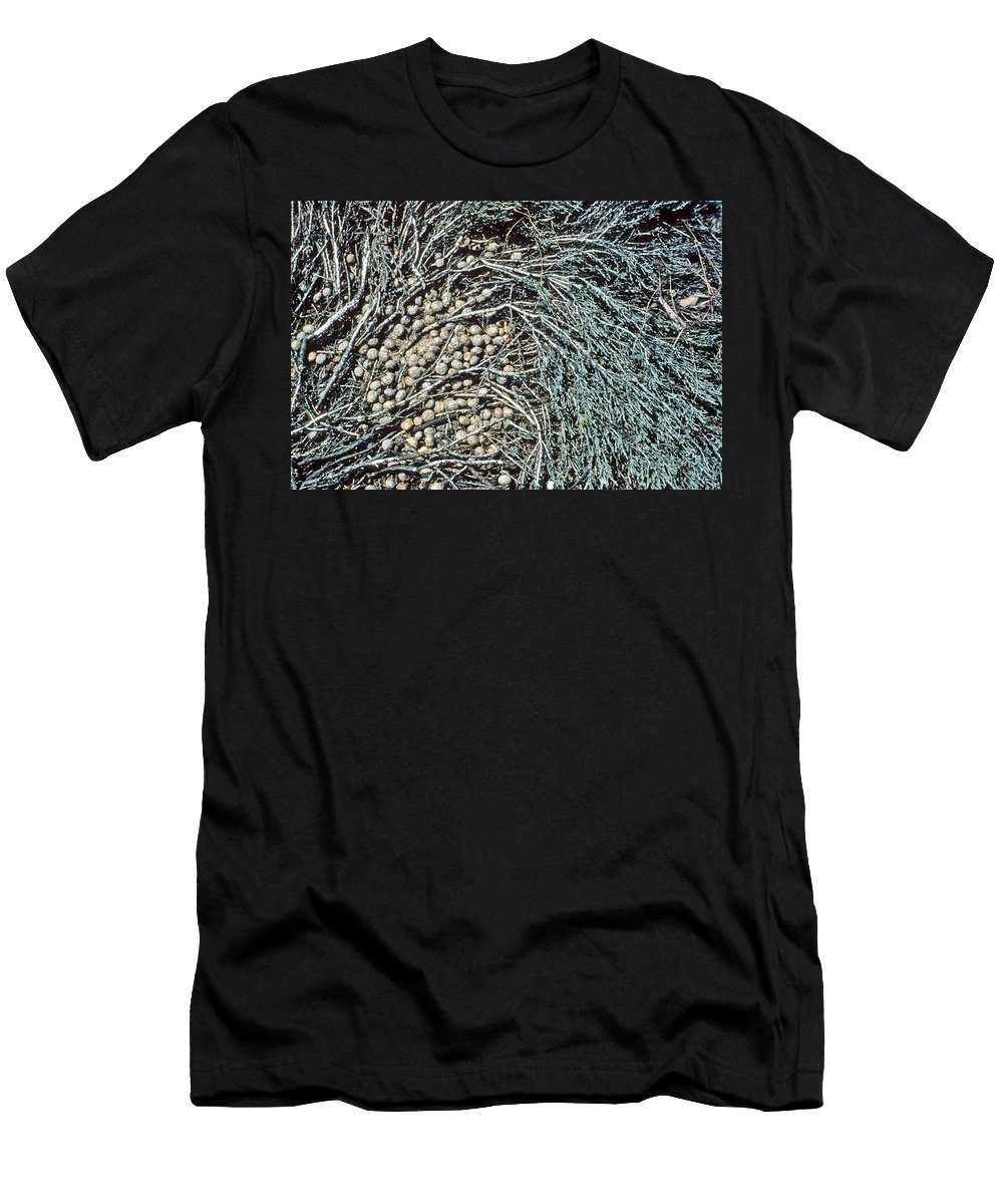 Seeds Men's T-Shirt (Athletic Fit) featuring the photograph Seeds Of The Sea by Laurie Paci