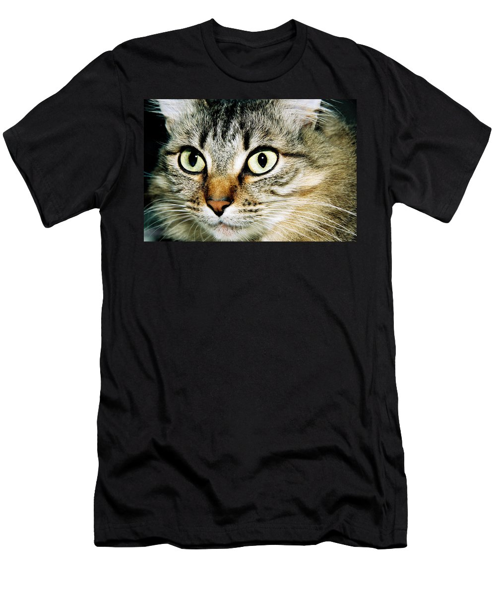 Cat Men's T-Shirt (Athletic Fit) featuring the photograph Senorita Verdita. by Spirit Vision Photography