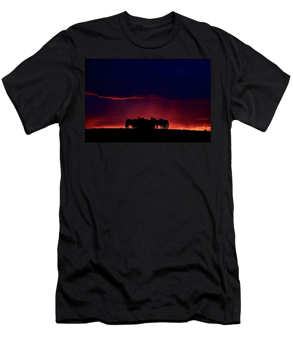 Horses Men's T-Shirt (Athletic Fit) featuring the digital art Set Sun Silhouetting Horses On Saskatchewan Ridge by Mark Duffy