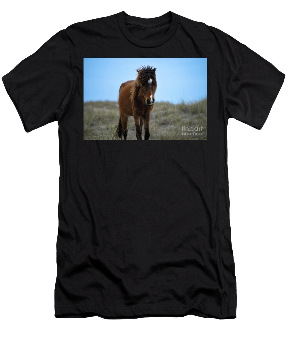 Shackleford Banks Men's T-Shirt (Athletic Fit) featuring the photograph Shackleford Banks Pony by Debbie Morris
