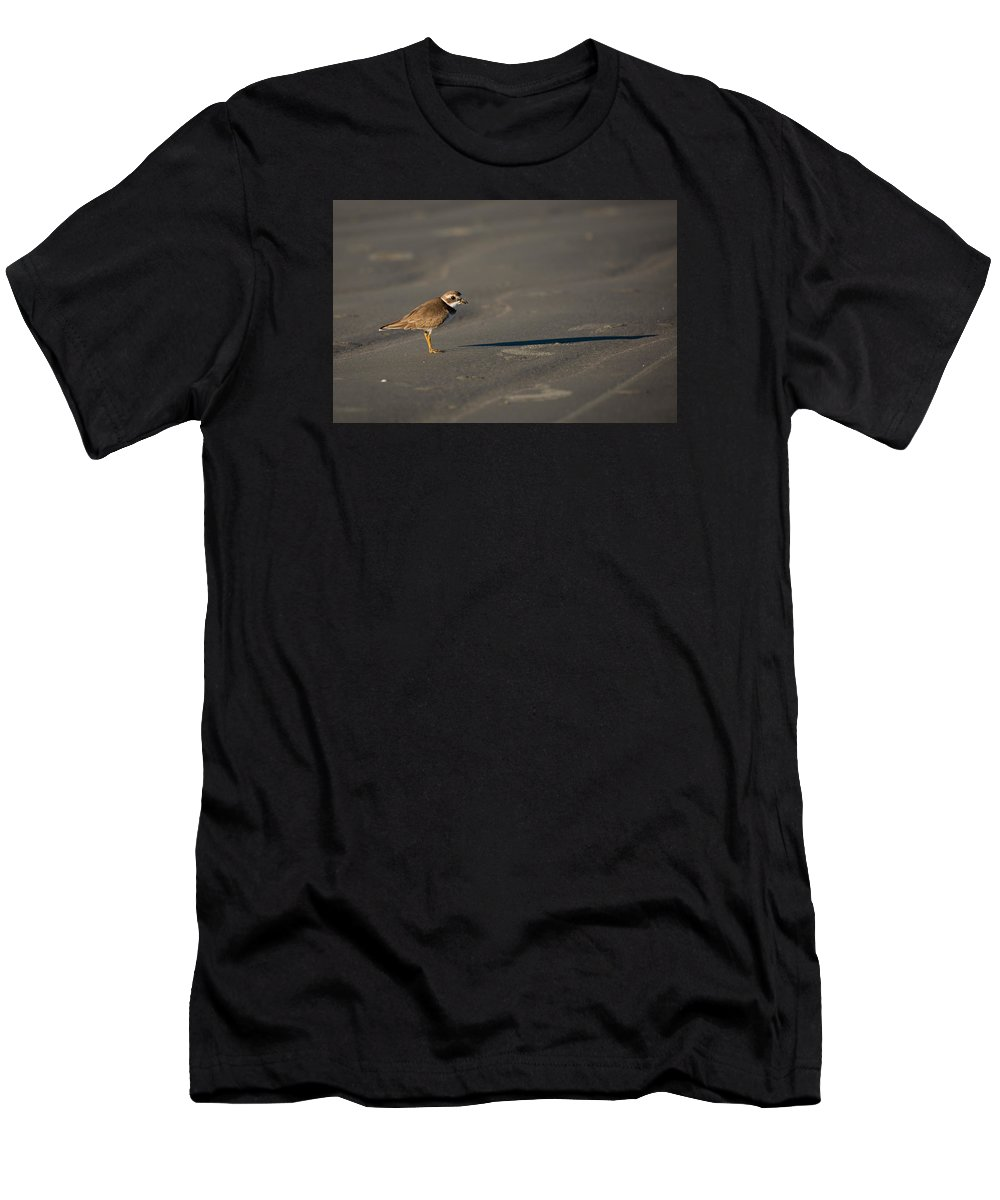 Bird Men's T-Shirt (Athletic Fit) featuring the photograph Shadow - Semipalmated Plover by Christy Cox