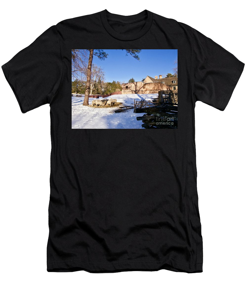 Colonial Williamsburg Men's T-Shirt (Athletic Fit) featuring the photograph Sheep Farm In Winter by Rachel Morrison
