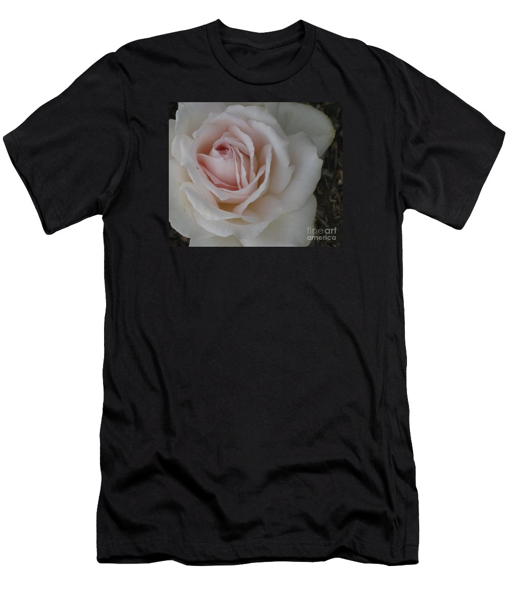 Sheer Bliss Men's T-Shirt (Athletic Fit) featuring the photograph Sheer Bliss Rose by Marta Robin Gaughen