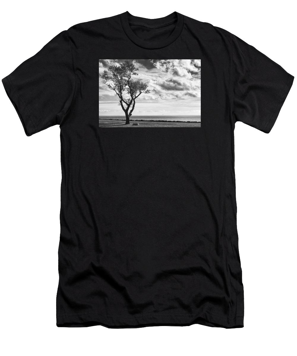 Trees Men's T-Shirt (Athletic Fit) featuring the photograph Sherwood Island by John Rizzitelli