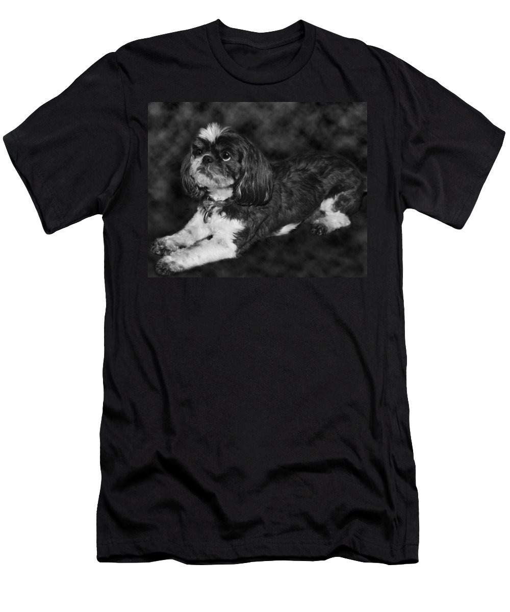 3scape Men's T-Shirt (Athletic Fit) featuring the painting Shih Tzu by Adam Romanowicz