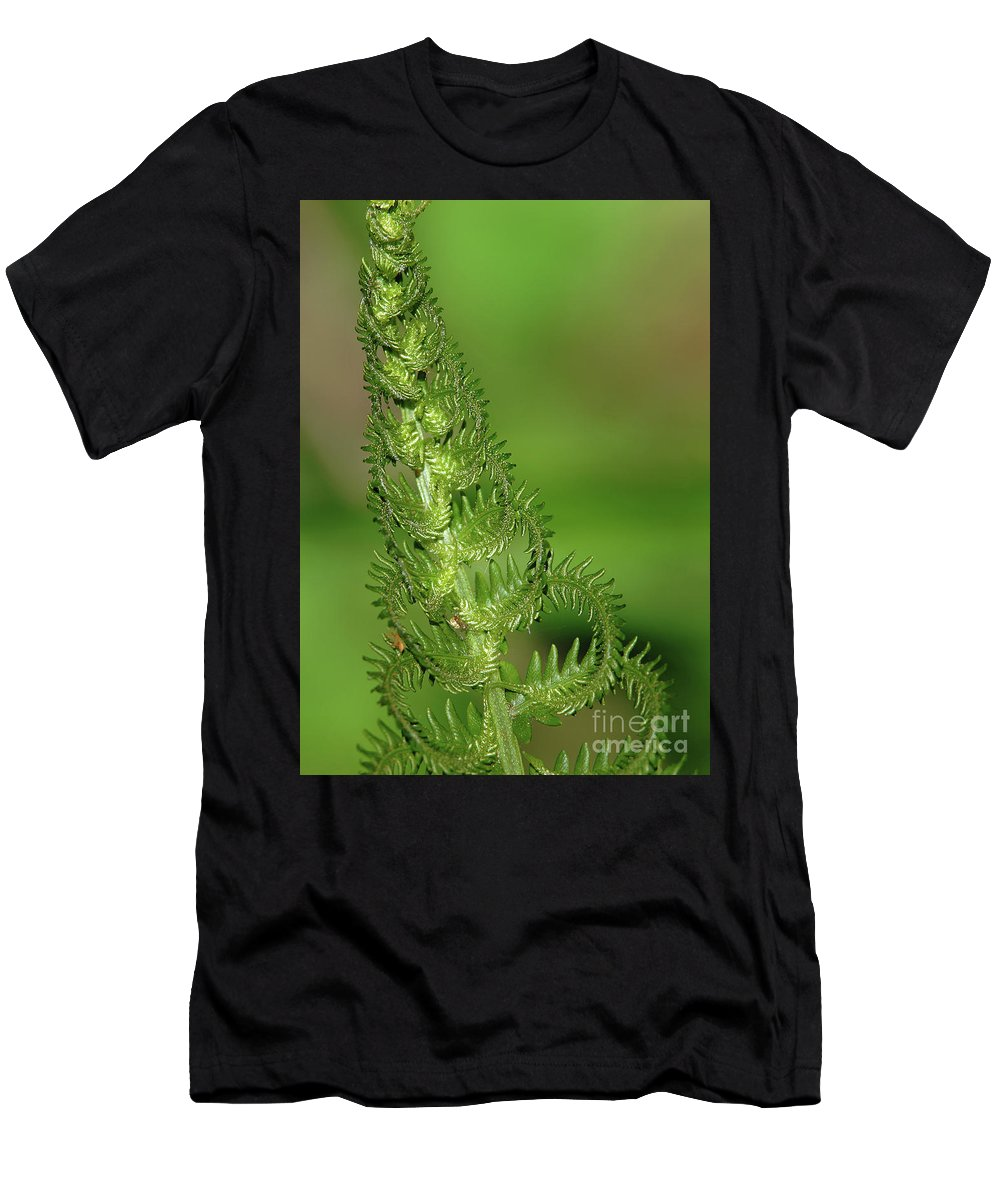 Green Men's T-Shirt (Athletic Fit) featuring the photograph Shimmering Fern by Robin Clifton