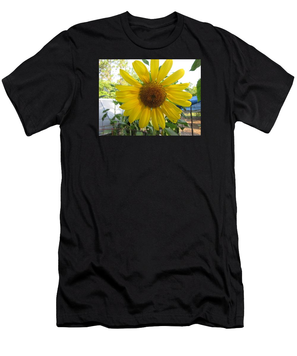 Sunflower Men's T-Shirt (Athletic Fit) featuring the photograph Shine Sunflower Shine by David Sutter