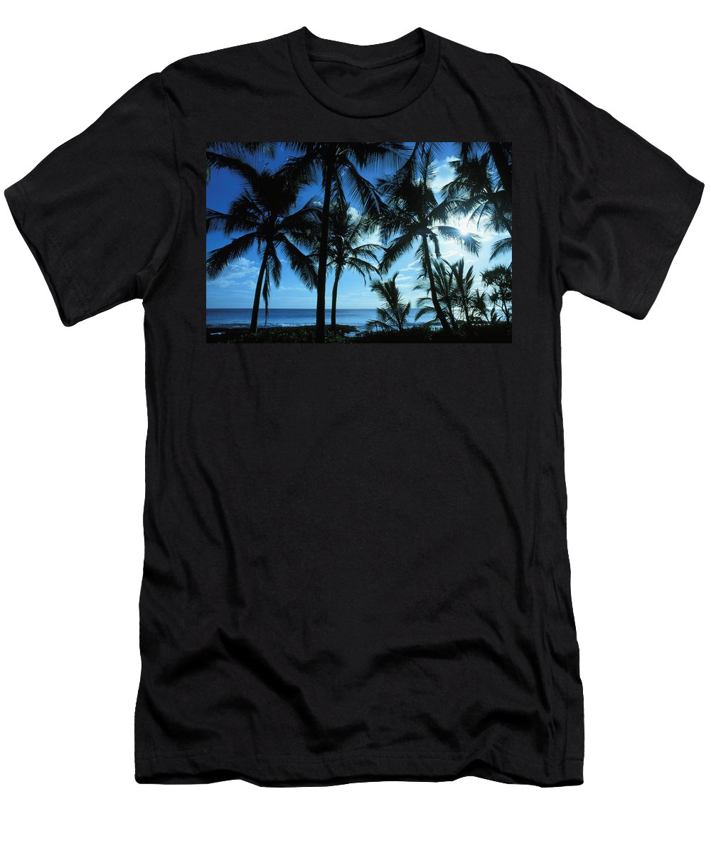 Afternoon Men's T-Shirt (Athletic Fit) featuring the photograph Silhouette Of Palms by Dana Edmunds - Printscapes