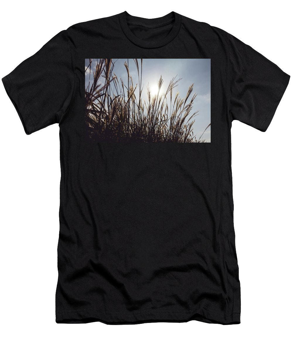 Autumn Men's T-Shirt (Athletic Fit) featuring the photograph Silver Grass by Hyuntae Kim
