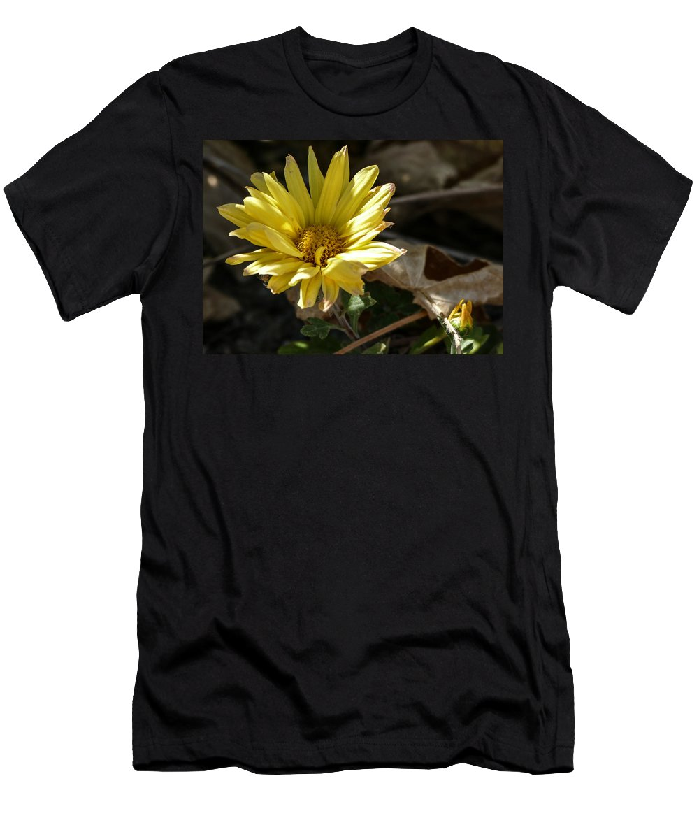 Flora Men's T-Shirt (Athletic Fit) featuring the photograph Single Yellow Mum by Laurel Powell