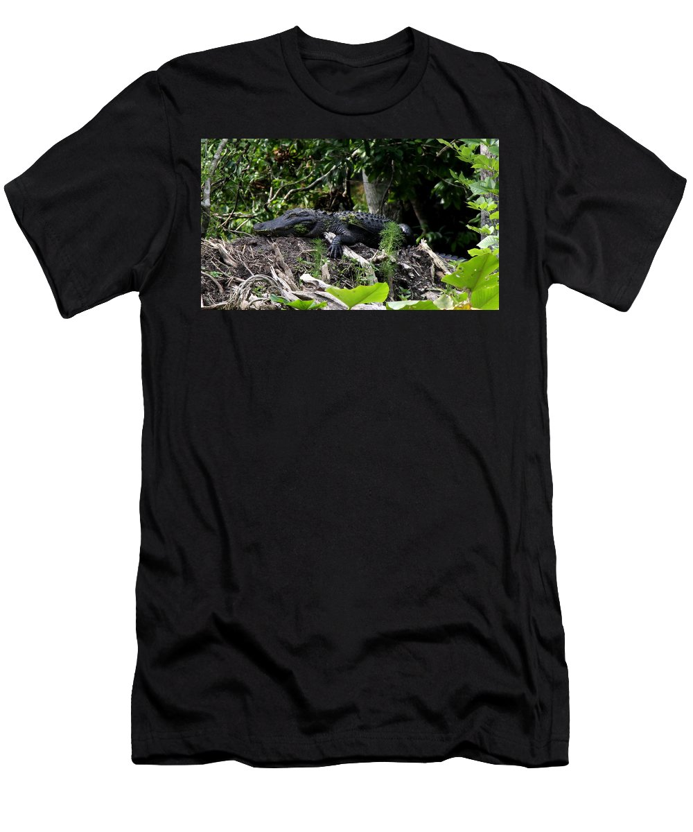 American Alligator Men's T-Shirt (Athletic Fit) featuring the photograph Sleeping Alligator by Barbara Bowen