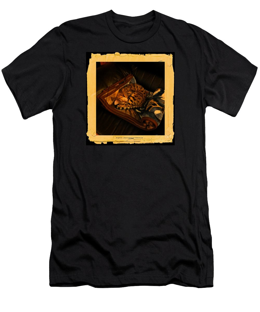 Barbara Griffin Men's T-Shirt (Athletic Fit) featuring the photograph Sleeping Cat Digital Painting by Barbara Griffin