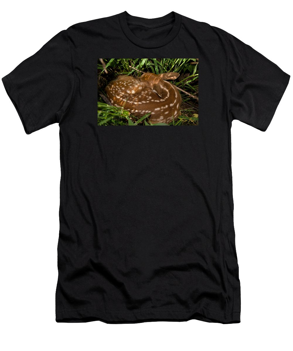 Animals Men's T-Shirt (Athletic Fit) featuring the photograph Sleeping Fawn by Rikk Flohr
