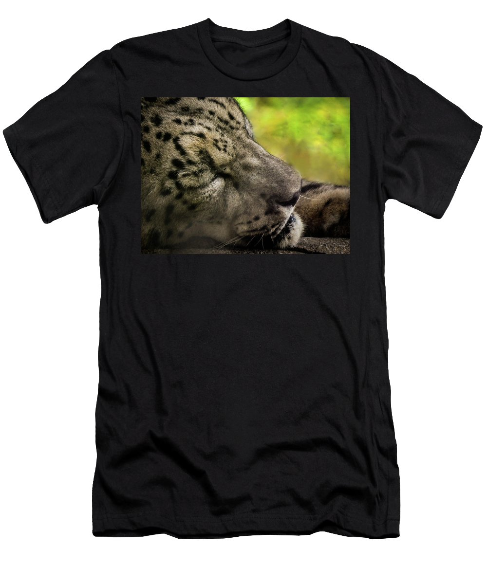 Leopard Men's T-Shirt (Athletic Fit) featuring the photograph Sleepy Kitty by Kristie Ferrick